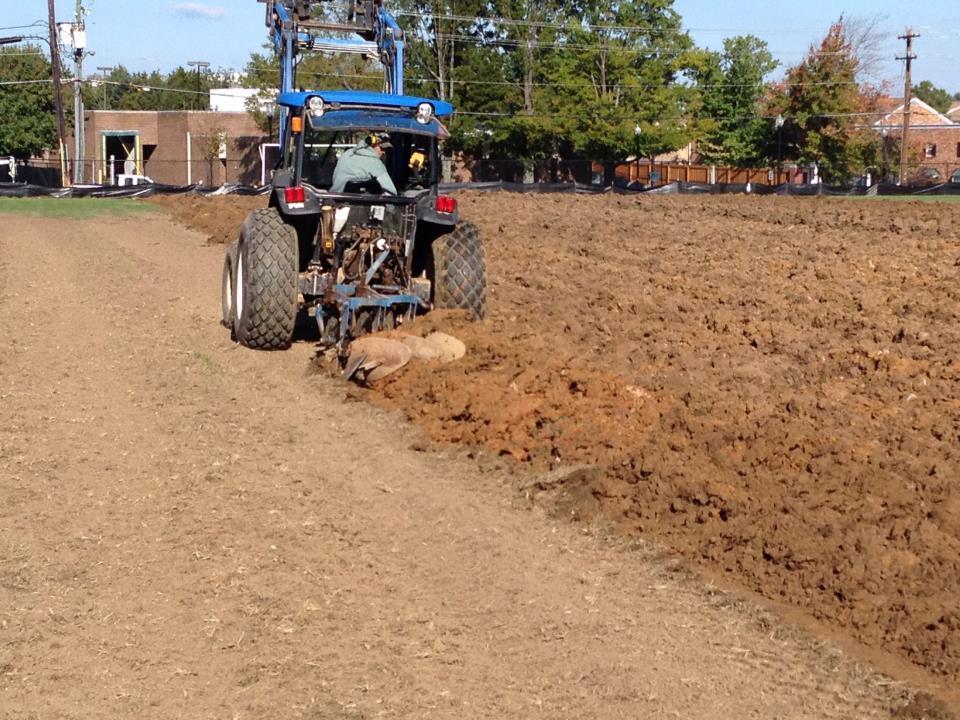 Plowing Turf Under