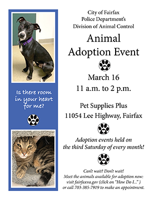 March 2019 animal adoption flyer