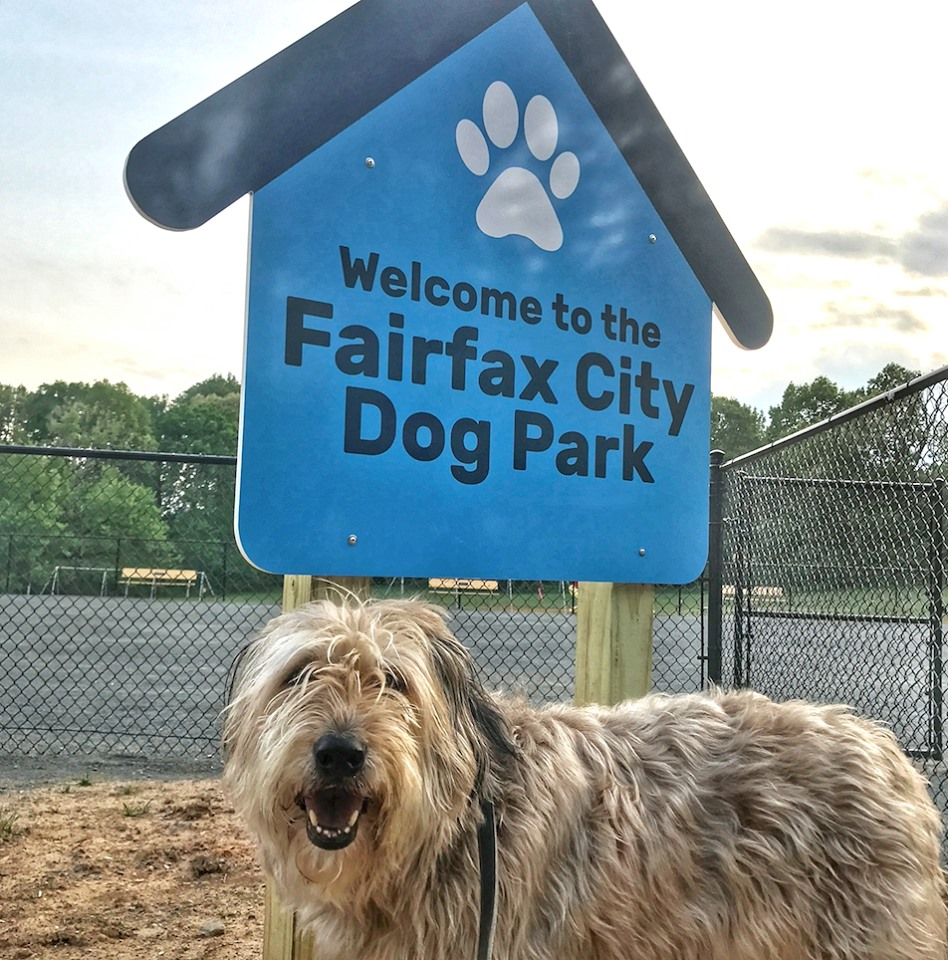 New Fairfax City Dog Park Now Open