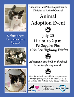 adoption flyer blue 07-19.web